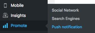 Dashbord -> Promote -> Push notifications